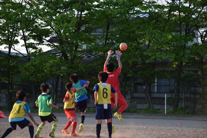 仁井田レッドスターズの練習風景7